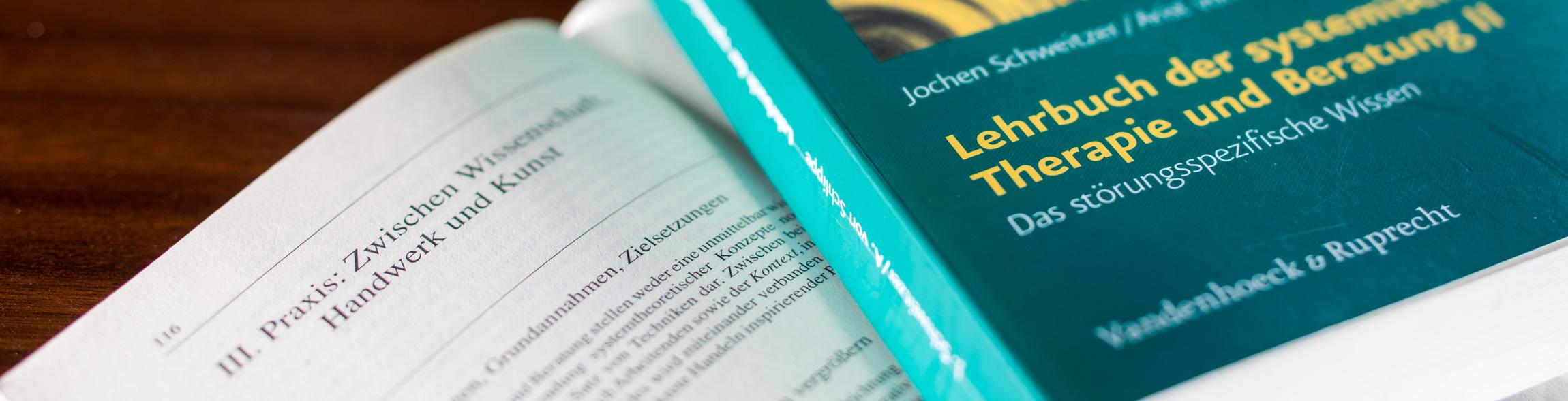 LSB – Lösungsorientierte Systemische Beratung